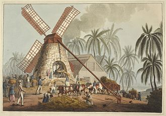 Sugarcane - Sugar plantation in the British colony of Antigua, 1823