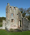 The NE corner tower, Baconsthorpe Castle, Baconsthorpe - geograph.org.uk - 1043188.jpg