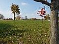 The Ohio State University (31291751962).jpg