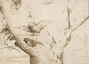 Hieronymus Bosch - The Owl's Nest. Pen and bistre on paper. 140 × 196 mm. Rotterdam, Museum Boijmans Van Beuningen