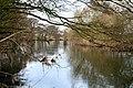 The River Derwent Near Ambaston Grange - geograph.org.uk - 1183496.jpg
