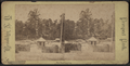The boat landing, from Robert N. Dennis collection of stereoscopic views 2.png