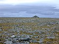 The summit cairn of Maoile Lunndaidh - geograph.org.uk - 497942.jpg