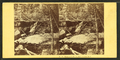 Thompson's Ravine, North Conway, N.H, by Soule, John P., 1827-1904.png