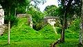 Tikal National Park-66.jpg