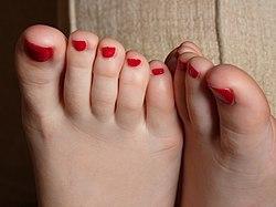 Toes feet 1.jpg
