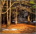 Tom Thomson's cabin, Kleinburg, Ontario (3344833856).jpg