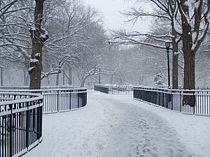 Tompkins Square Park - Snow in February 2008