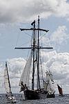 Tonnerres de Brest 2012 - Wylde Swan - 102.jpg