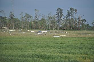 Tornado outbreak of April 14–16, 2011 - Debris strewn across a field near Dunn, NC