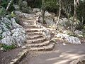 Trekking Stairs in Oren Creek, Mt. Carmel - panoramio.jpg