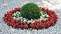 Tricolore vegetale - panoramio.jpg