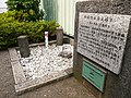 Trig Point 1st class Shimomizo vill Japan.JPG