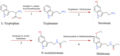 Tryptamine Biosynthesis Pathway.png