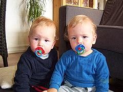 Twins 2004