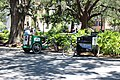 Two pedicabs, Chippewa Square.jpg