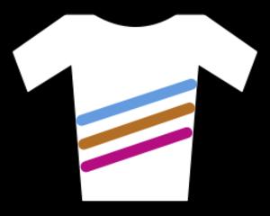 Boels–Dolmans - Image: UCI Womens World Tour jersey