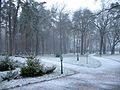 Ukraine Irpen 2010. First snow. Friendship park the Academician Zafiro Aliyeva.jpg