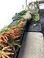 Union Square Farmers' Market, carrots and leeks, Manhattan, Feb 2021, New York.jpg