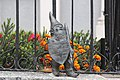 Ursus (Ursus) Wroclaw dwarf 03.jpg