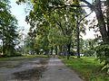 Uz Lindes parku - panoramio.jpg