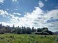 Valday, Novgorod Oblast, Russia - panoramio (1262).jpg