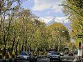 Vali Asr St during Nowruz.jpg