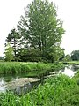 View across the River Bure - geograph.org.uk - 829600.jpg