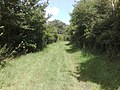 View along bridle path - geograph.org.uk - 503145.jpg