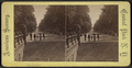 View on the Mall, from Robert N. Dennis collection of stereoscopic views.png