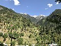 Visit to Kashmir.jpg