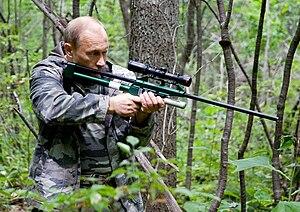 Domestic policy of Vladimir Putin - Putin uses a tranquilizer gun to sedate an Amur tiger in the Ussuri Nature Reserve in Primorsky Krai, 2008.