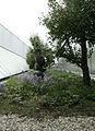 WLANL - dimormar - KunstHal (5).jpg