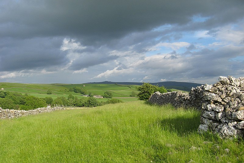 File:Walker's view-spring meadow, stone, clouds, horizon-West Field.jpg