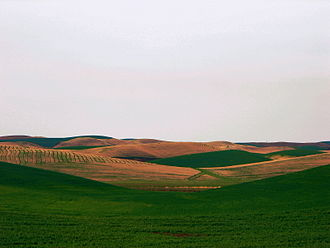 Washington wine - The Walla Walla Valley generally receives more precipitation than the rest of the Columbia Valley.