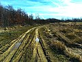 Wanderung 25 Februar 2017 Duesseldorf (V-0675-2017).jpg