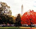 Washington Monument 2005.JPG
