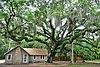 Washington Oaks State Gardens.jpg