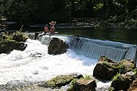 Wasserfall Eisbach Schwabinger Bach Englischer Garten Muenchen-1.jpg