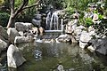 Waterfal chinese gardenl.jpg
