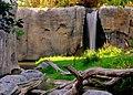 Waterfall in Zoo (14905498793).jpg