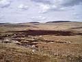 Waun Fignen Felen - geograph.org.uk - 171375.jpg