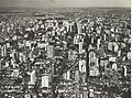 Werner Haberkorn - Vista aérea da Avenida Paulista. São Paulo-SP.jpg