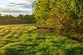 Westliche Wälder bei Ziemetshausen am Morgen.jpg