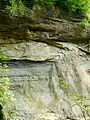 WikiProjekt Landstreicher Geotop Scheidegger Wasserfälle 20.jpg