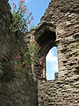 Window detail, Great Tower, Monmouth Castle - geograph.org.uk - 867912.jpg