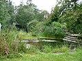 Witten-Annen Gartenteich Annener Berg.jpg
