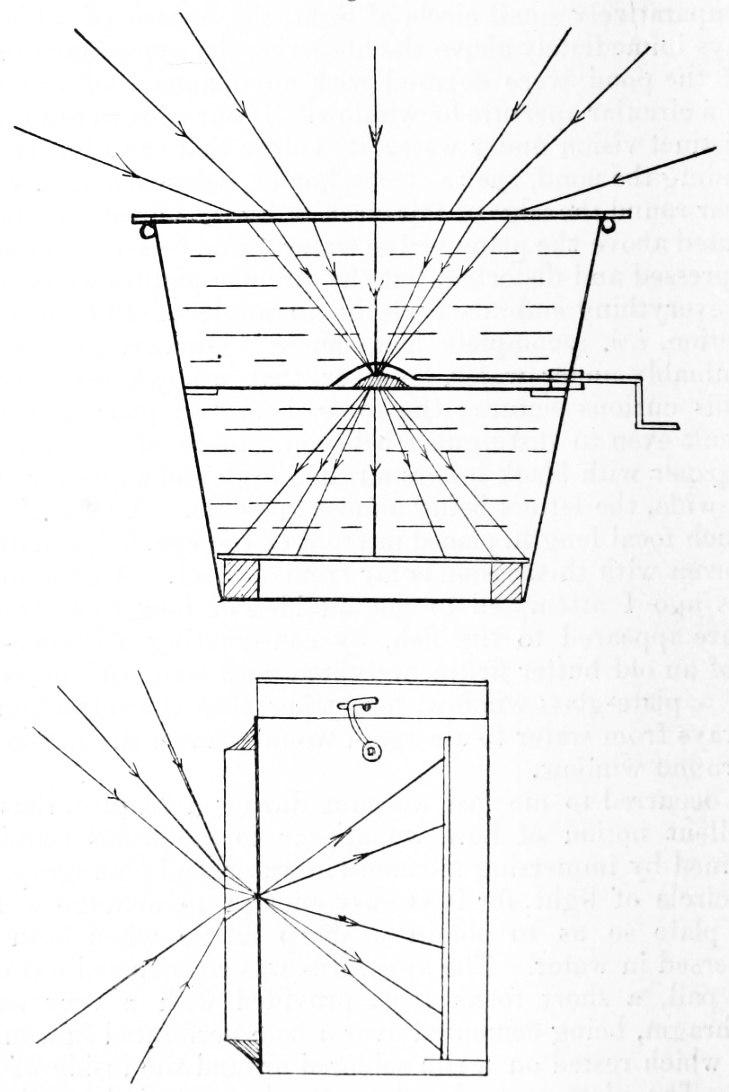 Wood-1906 - Fig 1