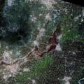 Xinxiang flooding 20210731 Sentinel-2.tif