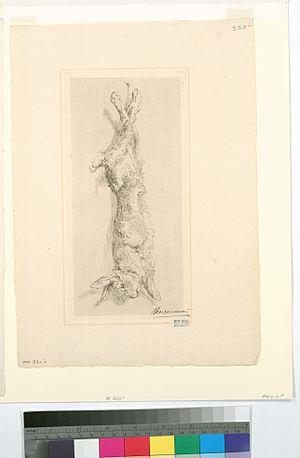 image of (Le lapin de garenne.) (NYPL b14506647-1128887)